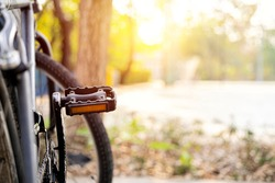 Dim image of bicycle and its pedal. The pedal against the park backdrop has trees and bright sunlight.