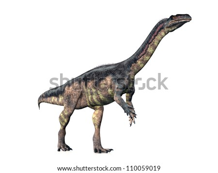 Dinosaur Plateosaurus Computer generated 3D illustration