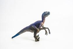dinosaur , Velociraptor on white background .