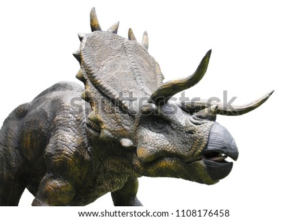 dinosaurs portrait.Dinosaur Triceratops horridus, lived more than 60 million years ago. isolated on white background