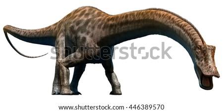 Diplodocus 3D illustration
