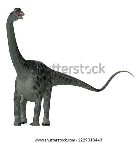 Diplodocus Dinosaur Tail 3D illustration - Diplodocus was a sauropod herbivorous dinosaur that lived in North America during the Jurassic Period.