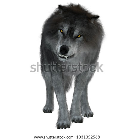 Dire Wolf on White 3d illustration - The Dire Wolf was a prehistoric carnivore that lived in North and South America during the Pleistocene Period. Photo stock ©