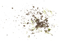 Dirt and moss bits isolated on white background and texture, with clipping path, organic plant and soil texture