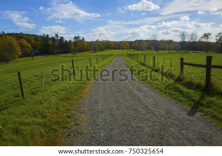 Dirt Country Road Through a Green Field in Autumn #750325654
