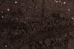 Dirt, imprints in the ground. Close-up.