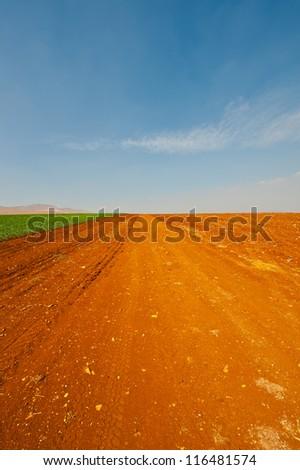 Dirt Road between Plowed Fields in Israel, Spring