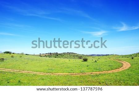Dirt road in green field - stock photo
