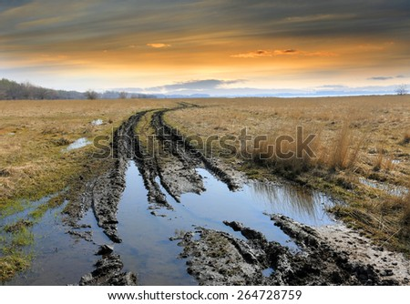 dirt road in steppe after rain #264728759