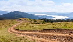 Dirt road in the Carpathian mountains. Ukraine.
