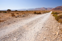 Dirt Road in the Judean Desert on the West Bank of the Jordan River