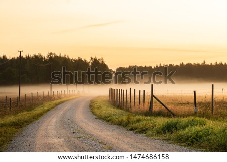 Dirt road leading to fog and sunrise during sunrise