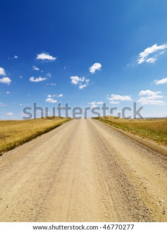 Dirt road lined with grasses in a rural countryside, with blue sky and clouds overhead.  Vertical shot.