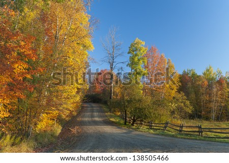 Dirt road on a sunny fall foliage morning, Stowe, Vermont, USA