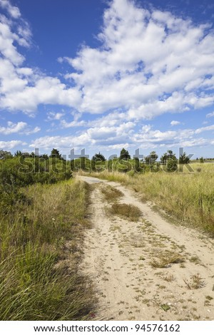 dirt road on martha's vineyard, cape cod, massachusetts, united states.