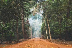 Dirt road stretching through Cambodian jungle.