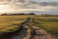 Dirt track winding into the distance, through the green fields. Fields with sheep in and the wispy clouds in the sky. The sun bright and glowing in the sky. The road over the hill and into the horizon