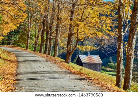 Dirt unpaved gravel road at autumn day in Vermont, USA. #1463790560