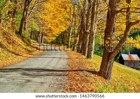 Dirt unpaved gravel road at autumn day in Vermont, USA. #1463790566