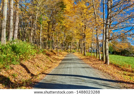 Dirt unpaved gravel road at autumn day in Vermont, USA. #1488023288