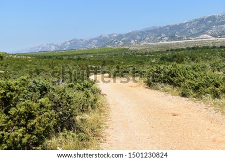 Dirt unpaved road in Mediterranean country - countryside #1501230824