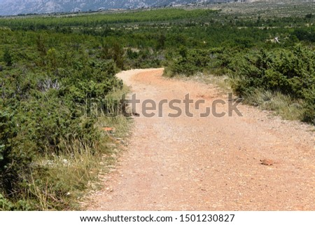 Dirt unpaved road in Mediterranean country - countryside #1501230827