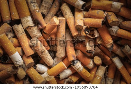 Dirty cigarettes after smoking were thrown into rubbish .Closeup shot of burnt cigarette butts. burnt cigarette butts with some ash. Smoking as global social problem. Nicotine addiction, anti-smoking.