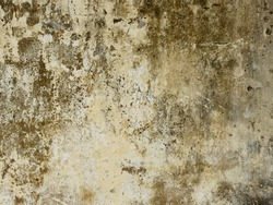 dirty concrete wall with mold, texture background
