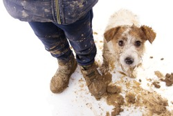 Dirty dog and kid. Guilty jack russell and boy wearing muddy cloth and shoes. Isolated on white background.