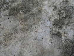 Dirty fungus or mold on concrete floor texture background