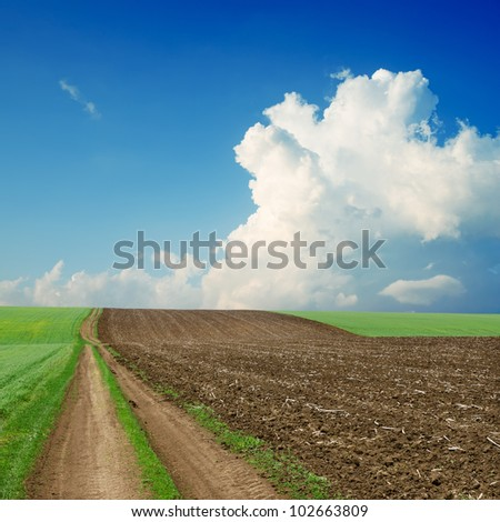 dirty road near green and black field under cloudy sky - stock photo