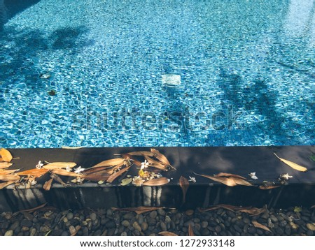 Old abandoned swimming pool with dirty water Images and