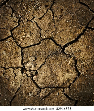 disaster of dry and cracked ground background