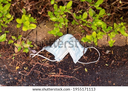 Discarded disposable face mask from pandemic, covid, coronavirus. Environmental pollution. Stock photo ©