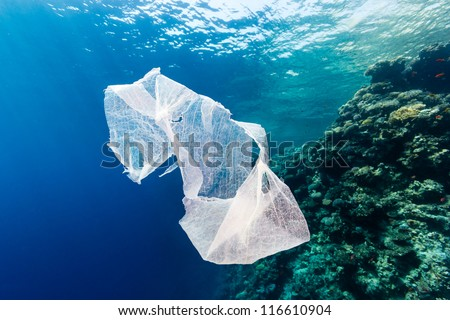 Discarded plastic bag drifting past a tropical coral reef