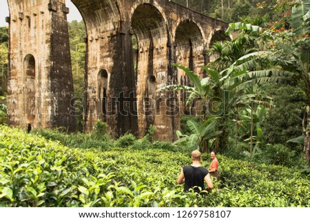 Discovering Nine Arch Bridge and the surrounding tea fields in Ella, Sri Lanka #1269758107