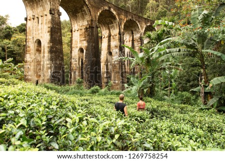 Discovering Nine Arch Bridge and the surrounding tea fields in Ella, Sri Lanka #1269758254