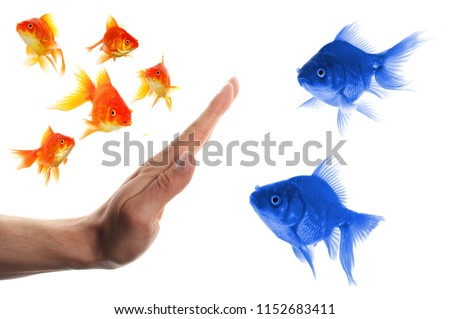 discriminating outsider racism or intolerance concept with goldfish and hand #1152683411