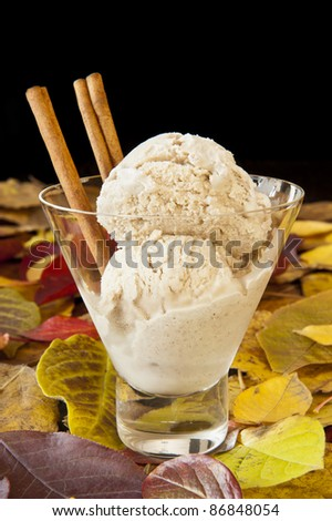 Dish of cinnamon ice cream surrounded by colorful fall leaves.