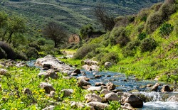 Dishon river in Israel on a sunny day in the winter with water flowing and old ruined brick house