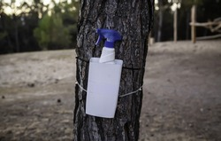 Disinfectant gel in forest, virus and covid, pandemic protection