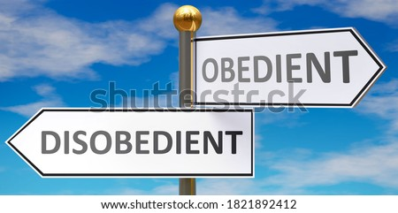 Disobedient and obedient as different choices in life - pictured as words Disobedient, obedient on road signs pointing at opposite ways to show that these are alternative options., 3d illustration Сток-фото ©