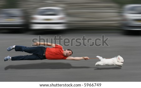 Disobedient dog running and dragging a man by the leash