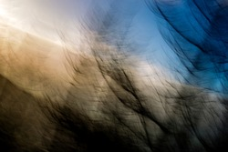Disoriented image of hazy, fragmented, streaking, silhouetted trees, backlit by warm, bright late afternoon sun in blue sky - abstract, motion-blurred background texture