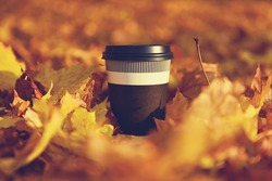 disposable coffee cup on yellow leaves