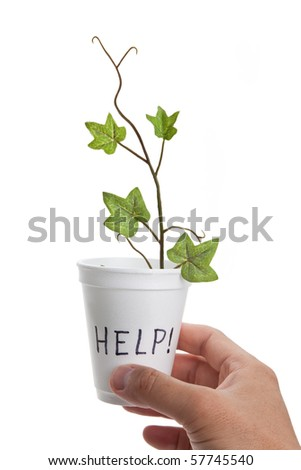 Disposable Cup, help, concept of Recession