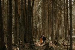 Distant view on two small silhouettes of man and woman walking away and in forest of huge tall green brown trees