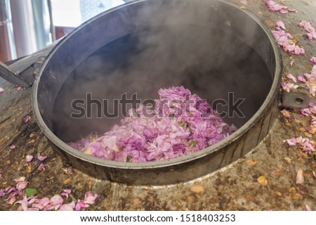 Distillery of rose oil. Pink rosa damascena flowers putted into distiller for distillation rose oil. Industrial concept. Foto stock ©