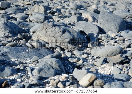 Distribution of pumice stones on a beach #691597654
