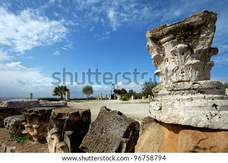 District of Punic Byrsa, Carthage, Tunisia - stock photo